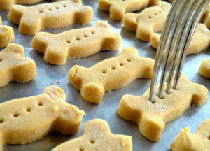 pumpkin-biscuits