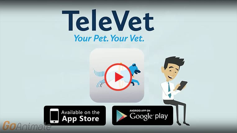 TeleVet YouTube Video, Get Vet care from your phone or computer